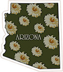 State of Arizona Magnets